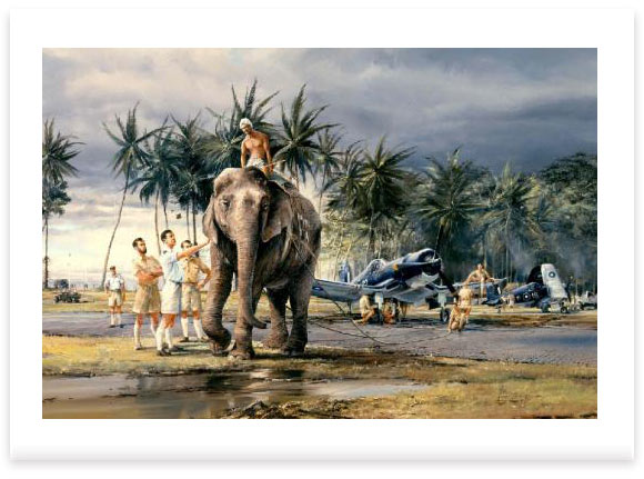 Puttalam Elephants by Robert Taylor